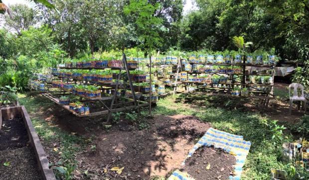 Buklod's Garden