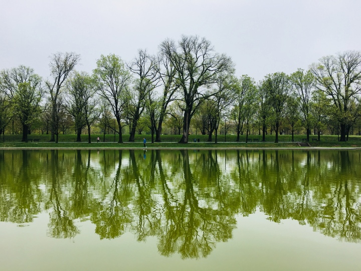 Parks and Water Bodies